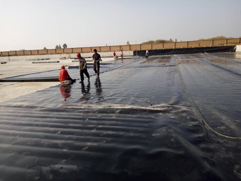 Case study of geomembrane const